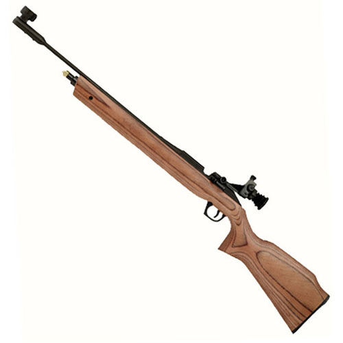 Daisy 887 Gold Medalist Competition CO2 Rifle