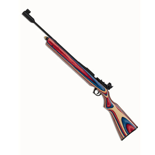 Daisy 888 Medalist Competition CO2 Rifle