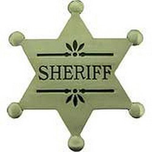 Eagle Emblems BDG PWT Sheriff Pin - 2.1/2 Inch