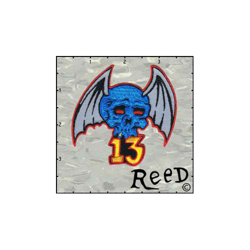 Reeds Skull Wings 13 Patch