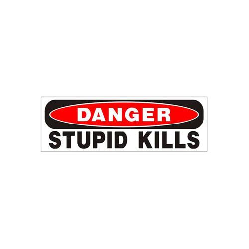 Danger Stupid Kills Bumper Sticker
