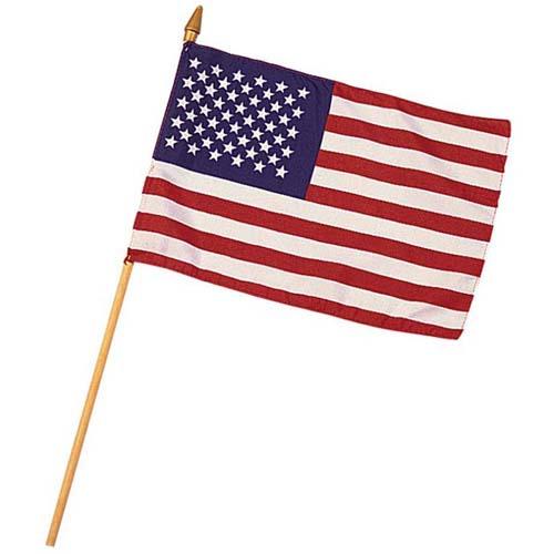 Mini 8 Inch X 12 Inch American Flag